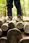 boots-on-logs-isolation-freelyphotos